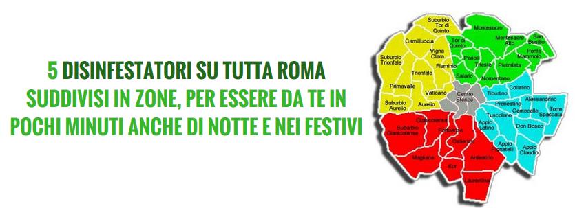Disinfestazioni parassiti derattizzazioni ratti roma for Formiche volanti in casa